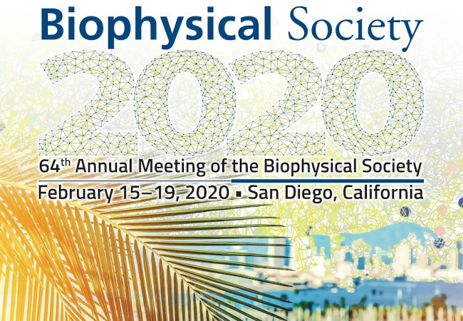 64th Annual Meeting of the Biophysical Society