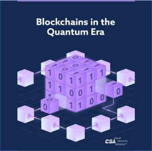 Can Blockchains Survive The Quantum Computer?