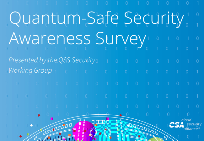 Quantum-Safe Security Awareness Survey 2020